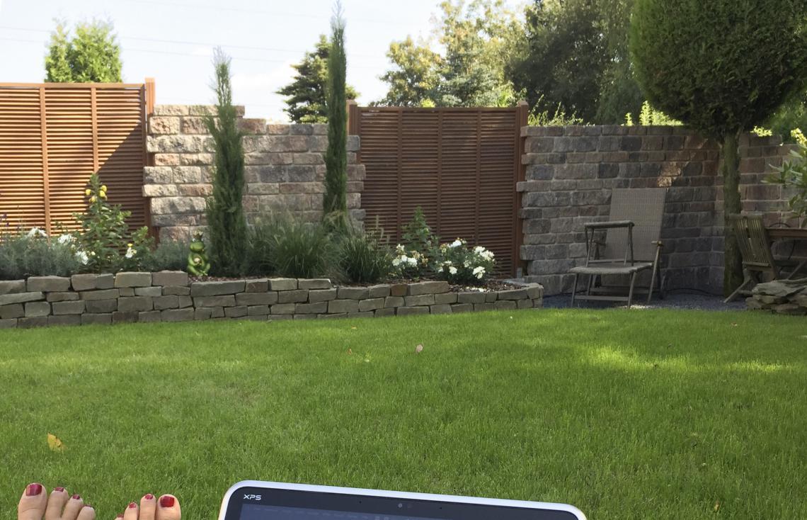 Neuanlage, Mauer mit Holz, Pflanzen